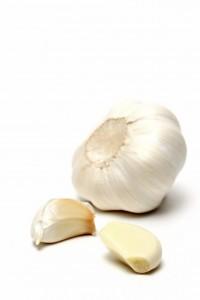 garlic over white